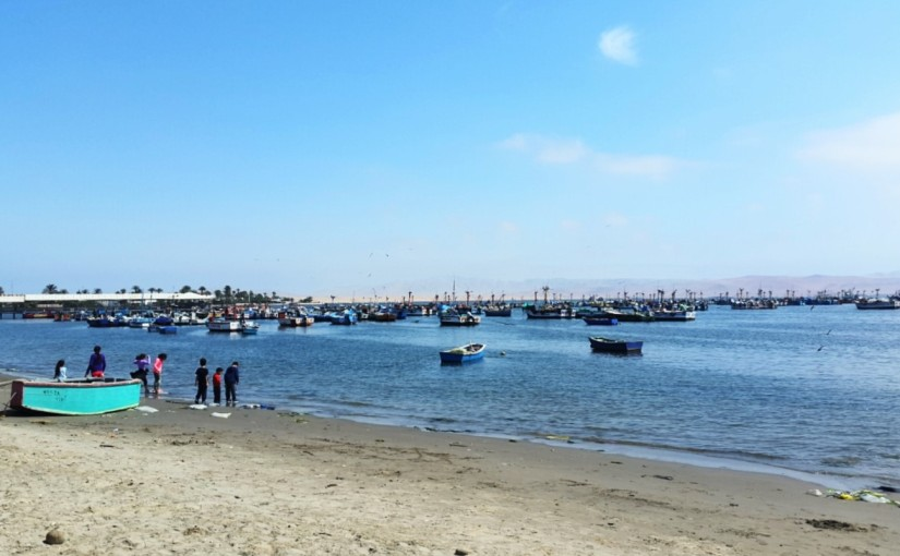 Paracas: arena, viento ybiodiversidad
